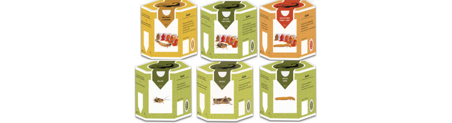 Insectes comestibles - Les packs